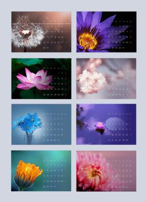 цветочный календарь скачать бесплатно